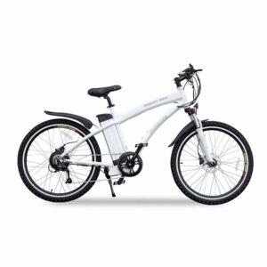 Vermont Long Range 500 Watt Electric Bicycle 2