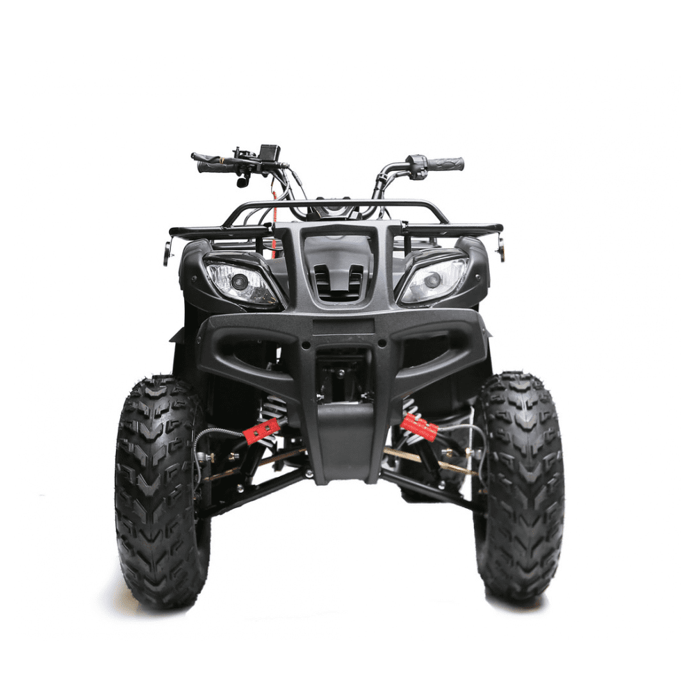 Tao Tao 150D Utility Youth ATV