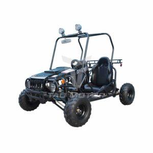 Tao Tao 125cc Dune Buggy 2