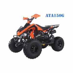 Tao Tao 150G Youth ATV 2