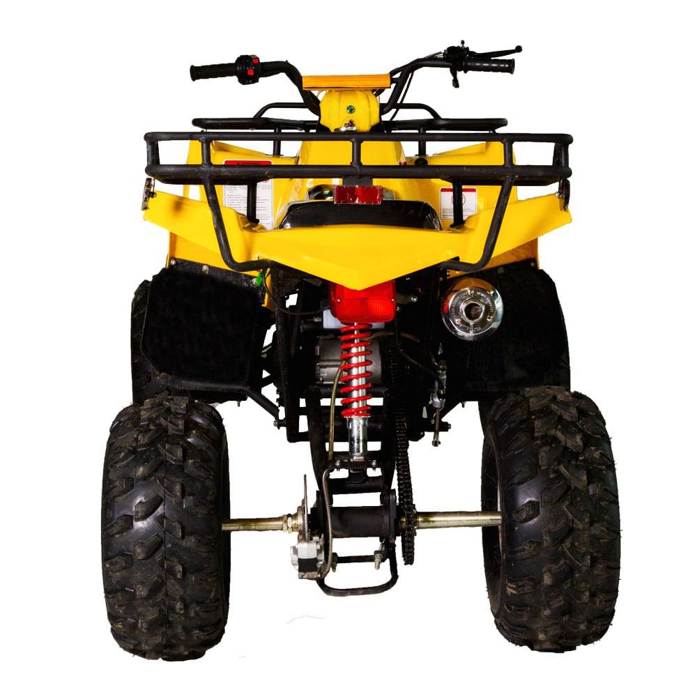 Tao Tao 150D Utility ATV - Edmonton ATV Pros